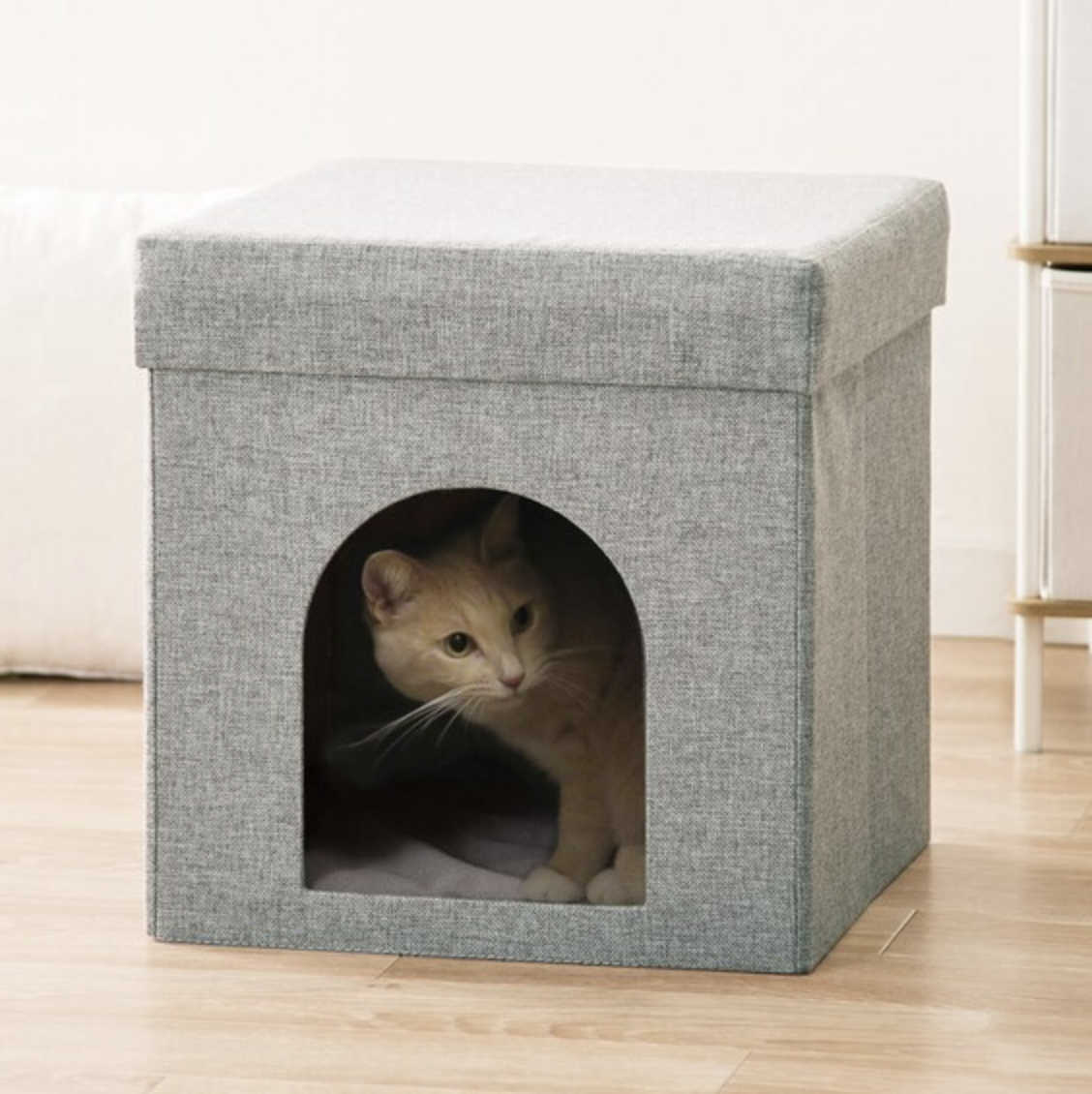 座れる室内用ペットハウス